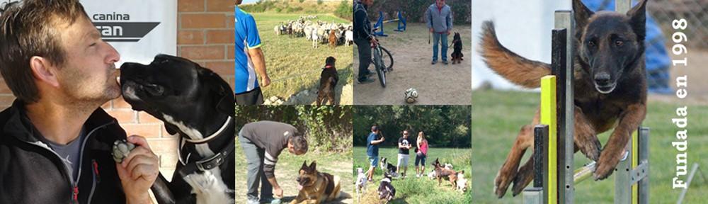 Escuela canina Rivalcan